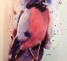 Mr Bullfinch iPhone & IPod case  by Karl Fletcher