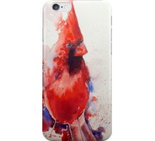 A visit from the Cardinal iPhone/iPod cover iPhone Case/Skin