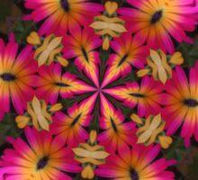 Crazy good colours, Daisy Mandala Sticker