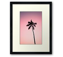 palm tree ver.pink Framed Print