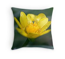 Spring sunshine even on a wet day. Throw Pillow