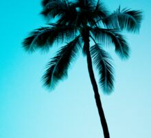 palm tree ver.skyblue Sticker