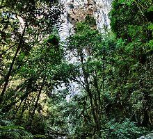 Casa de Pedra Cave (House of Stone Cave) I by Luiz  Filipe