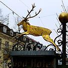 Hirsch Hotel, Baden-Baden by bubblehex08