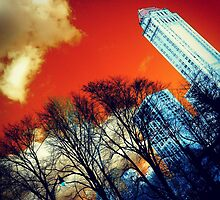 Central Park Red by Guilherme Pontes