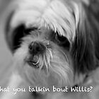 What you talkin bout Willis? by Terry Arcia