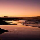 The Beach by Nicole Doyle