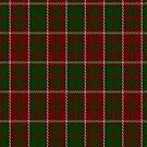 02237 Cashew Cashmere (Unidentified #59) Fashion Tartan Fabric Print Iphone Case by Detnecs2013