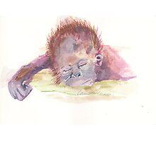 Monkeyin' Around Photographic Print