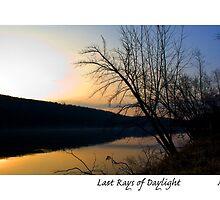 Last Rays of Daylight by MjhArt