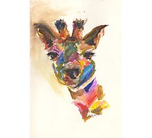 Giraffe of Many Colors Photographic Print