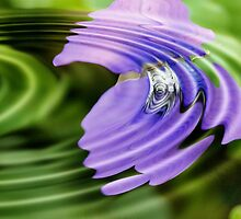 Violet Garden Flower Ripple by aprilann