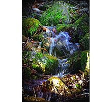 MountainSide Trickle Photographic Print