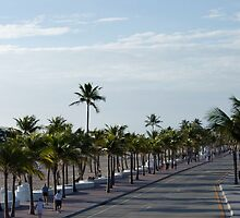 Hotels in lauderdale beach by jhonstruass