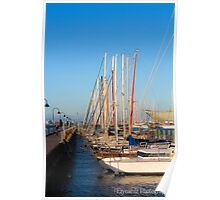 Yachts on the bay Poster