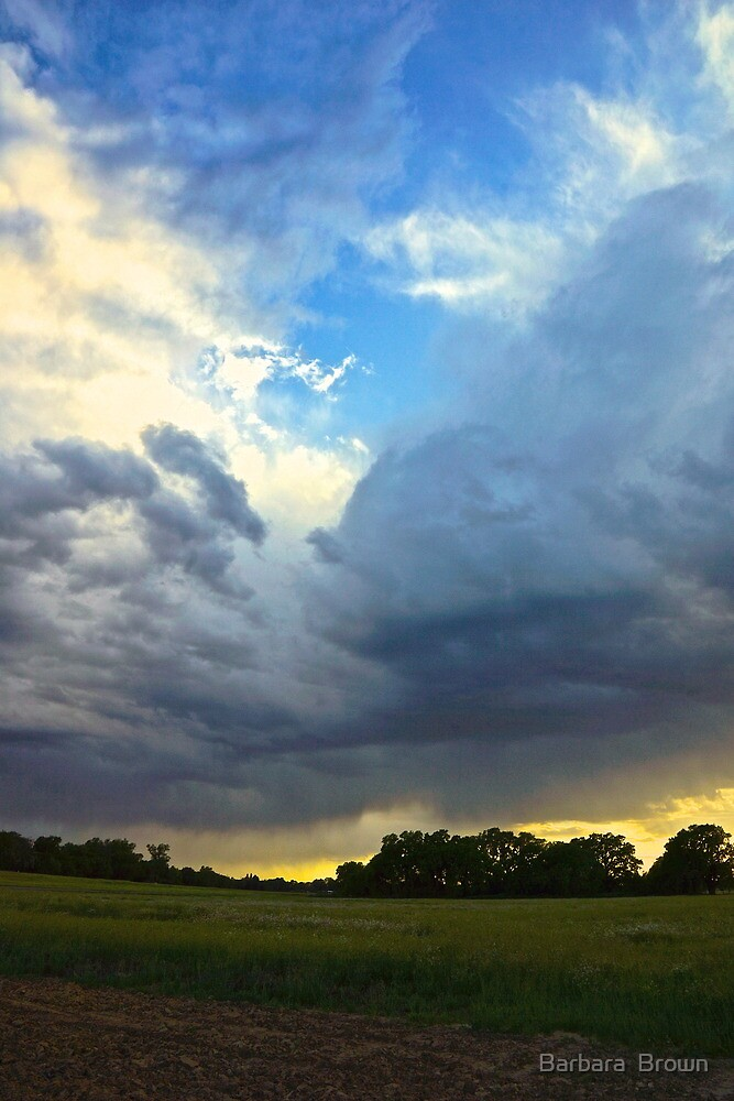 Receding Storm by Barbara  Brown