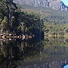 Lake Rosebury, Tasmania. by Esther&#x27;s Art and Photography