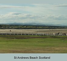 St Andrews beach from St Andrews Golf Course by Graeme Rouillon