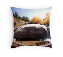 picture book fall II Throw Pillow