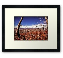 picture book fall V Framed Print