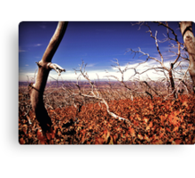 picture book fall V Canvas Print