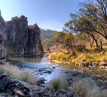 Cave Creek Gorge by Terry Everson