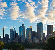 Sydney City Skyline by Llewellyn Cass