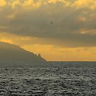 La Gomera from Tenerife by Thomas Tolkien