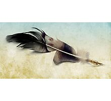 Memory of a quill Photographic Print