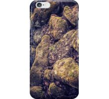 Mossy Rocks iPhone Case/Skin