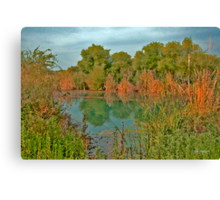 As Almost Watercolour of Natutre Canvas Print