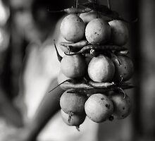 Lemons by Aurobindo Saha