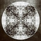 Flower Of Life S by filippobassano