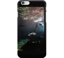 Dolphin Pod iPhone Case/Skin