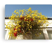 Sunshine Basket Canvas Print