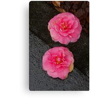 sidewalk lotus 2 Canvas Print