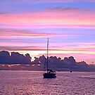 The Purple Hour by globeboater