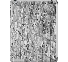 US Mid West: Winter Fields iPad Case/Skin