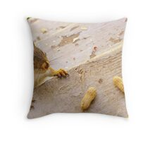 Earth Day 2013 ~ With Peanuts Throw Pillow