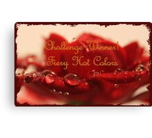 Banner - FHC - Challenge Winner Canvas Print