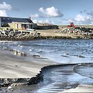 60N........ The Beach at Sandness by Larry Lingard-Davis