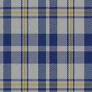 02251 Shirt-tail Cousin (Unidentified) Tartan Fabric Print Iphone Case by Detnecs2013