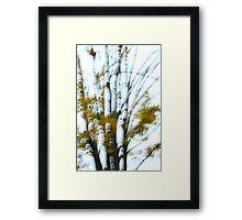 Fall In Motion Framed Print