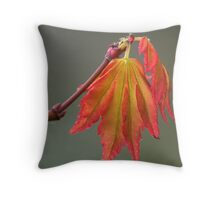 Acer leaves Throw Pillow