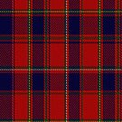 02254 Red, Red Weave (Unidentified) Artefact Tartan Fabric Print Iphone Case by Detnecs2013
