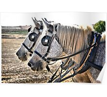 Two Horse Power Poster