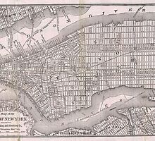 Vintage Map of New York City (1886) by alleycatshirts