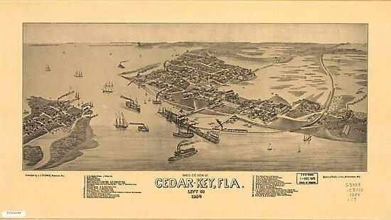 Vintage Pictorial Map of Cedar Key Florida (1884) by alleycatshirts