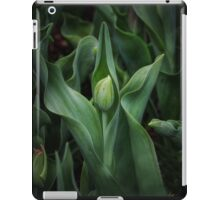 Spring time Tulip 1 iPad Case/Skin