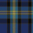 02272 Sassy Lassie Unidentified Artefact Tartan Fabric Print Iphone Case by Detnecs2013